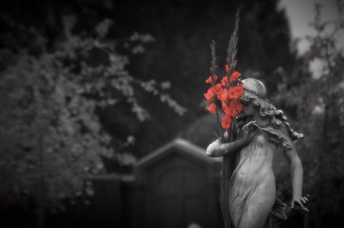 Sortie photo dans un cimetière lors de la Toussaint.