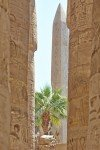 Vacances Egypte Mer Rouge 2014 – Reflex_11