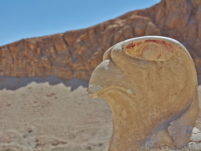 Vacances Egypte Mer Rouge 2014 – Reflex_18