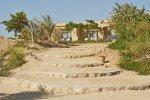 Vacances Egypte Mer Rouge 2014_111