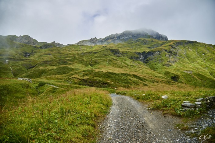 Aiguilles rouges Chamonix Massif du mont blanc-NIKON D800E-20-4-