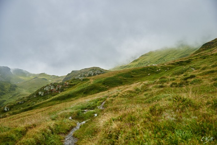 Aiguilles rouges Chamonix Massif du mont blanc-NIKON D800E-23-4-