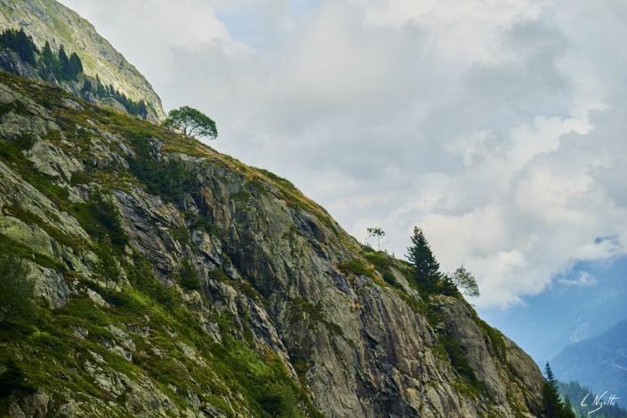 Aiguilles rouges Chamonix Massif du mont blanc-NIKON D800E-48-4-