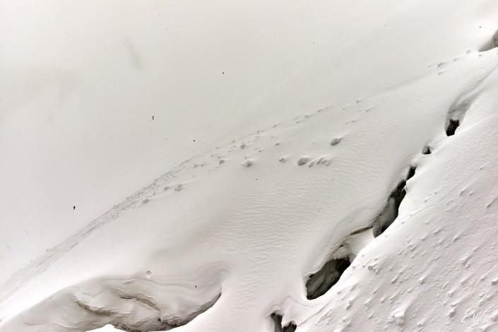 Aiguilles rouges Chamonix Massif du mont blanc-NIKON D800E-49-22-