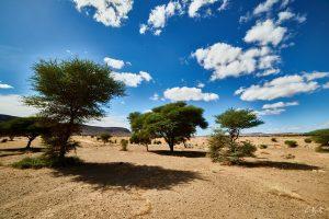 26 Maroc 2015 NIKON D800E A16 14 mm