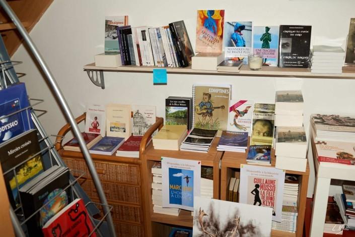 5 Laurent Nizette – expo villers la ville librairie acrodacrolivres NIKON D800E A3.2 35 mm