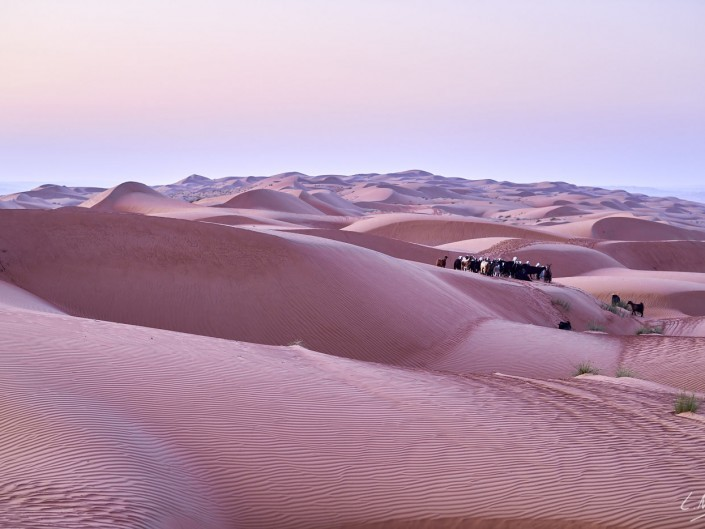 Oman – Dubai-073 -NIKON D800E-2.8-85 mm