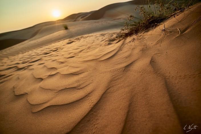 Oman – Dubai-076 -NIKON D800E-4.5-14 mm