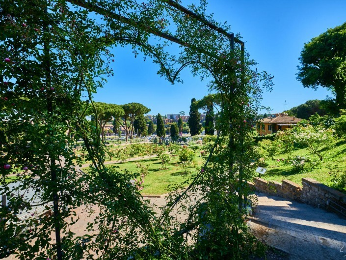 Italie 2017 – 15 mm – Rome 2017 Manu NIKON D800E 15 mm 133261 – mai 08 2017 – NIKON D800E