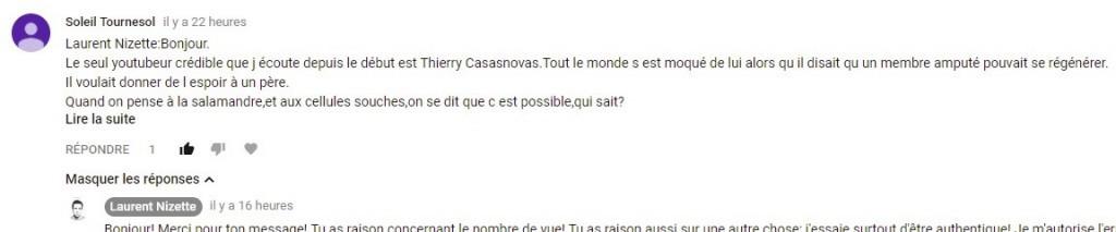 """Commentaire de """"Soleil Tournesol"""" sur la vidéo Youtube sur les youtubeurs, vlogueurs, et blogueurs"""