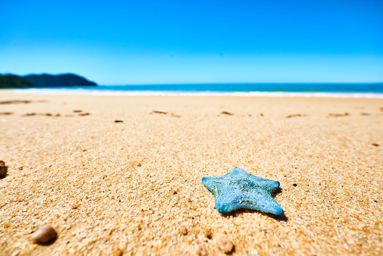 contraste avec étoile et ocean - coaching