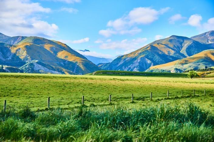 Compte rendu de Nouvelle Zélande